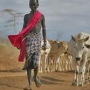 Pastoralism: Africa's Invisible Economic Powerhouse?